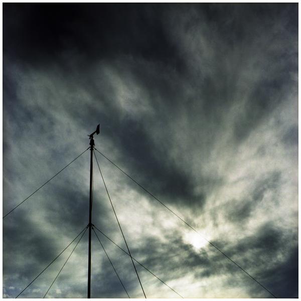 Wild Wind.jpg