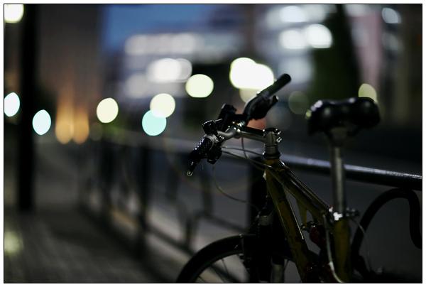midnight wandering1.jpg